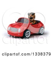 Clipart Of A 3d Tiger Wearing Sunglasses Roaring And Driving A Red Convertible Car 2 Royalty Free Illustration