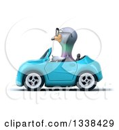 Clipart Of A 3d Bespectacled Pigeon Driving A Blue Convertible Car 2 Royalty Free Illustration