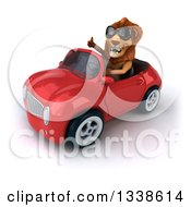 Clipart Of A 3d Male Lion Wearing Sunglasses Giving A Thumb Up And Driving A Red Convertible Car Royalty Free Illustration by Julos