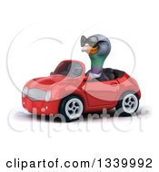 Clipart Of A 3d Pigeon Wearing Sunglasses And Driving A Red Convertible Car 2 Royalty Free Illustration