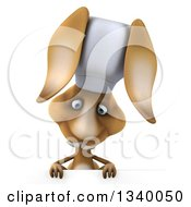 Clipart Of A 3d Brown Bunny Rabbit Chef Looking Down Over A Sign Royalty Free Illustration by Julos