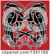 Clipart Of Black And White Celtic Knot Cranes Or Herons On Red Royalty Free Vector Illustration