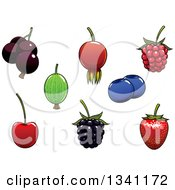 Clipart Of A Strawberry Blackberry Raspberry Cherry Black Currant Blueberry Gooseberry And Briar Fruits Royalty Free Vector Illustration