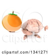 Clipart Of A 3d Brain Character Holding Up A Navel Orange And Thumb Down Royalty Free Illustration