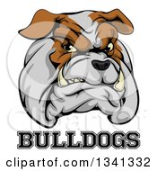 Clipart Of A Growling Aggressive Bulldog Mascot Face Over Text Royalty Free Vector Illustration by AtStockIllustration