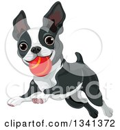 Clipart Of A Cute Boston Terrier Or French Bulldog Playing With A Ball Royalty Free Vector Illustration by Pushkin