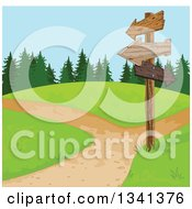Wooden Directional Sign Post And Paths On A Park Hill