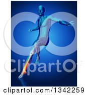 Clipart Of A 3d Anatomical Man Jumping And Landing With Visible Leg Pain Bones And Muscles Over Blue Royalty Free Illustration