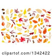 Clipart Of Colorful Autumn Leaves 3 Royalty Free Vector Illustration