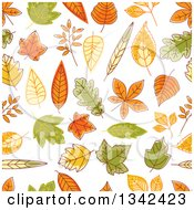 Clipart Of A Seamless Background Pattern Of Sketched Autumn Leaves Royalty Free Vector Illustration