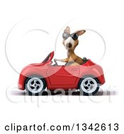 Clipart Of A 3d Kangaroo Wearing Sunglasses And Driving A Re Convertible Car To The Left Royalty Free Illustration