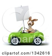 Clipart Of A 3d Kangaroo Holding A Blank Sign And Driving A Green Convertible Car To The Left Royalty Free Illustration