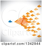 Clipart Of A Group Of Orange Fish Following A Blue Fish Over Shading Royalty Free Vector Illustration by ColorMagic