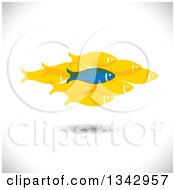 Clipart Of A Blue Fish Standing Out From A Group Of Yellow Fish Over Shading Royalty Free Vector Illustration