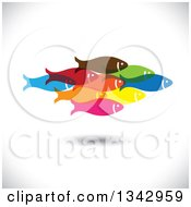 Clipart Of A Group Of Colorful Schooling Fish Over Shading 3 Royalty Free Vector Illustration