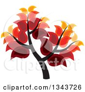 Clipart Of A Tree With Rich Autumn Colored Leaves Royalty Free Vector Illustration