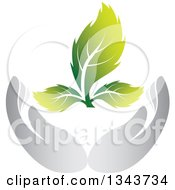 Clipart Of Gray Nurturing Hands Holding A Green Plant Royalty Free Vector Illustration by ColorMagic #COLLC1343734-0187