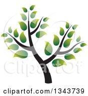 Clipart Of A Green Tree With Gradient Leaves Royalty Free Vector Illustration by ColorMagic