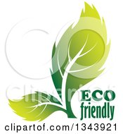 Clipart Of Two Green Leaves With Eco Friendly Text Royalty Free Vector Illustration