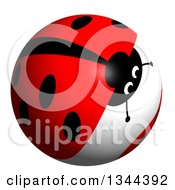 Clipart Of A Ladybug Sphere Royalty Free Illustration