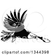 Clipart Of A Black And White Flying Bald Eagle Royalty Free Vector Illustration by dero