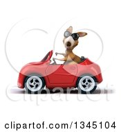 Clipart Of A 3d Kangaroo Wearing Sunglasses Giving A Thumb Down And Driving A Green Convertible Car To The Left Royalty Free Illustration