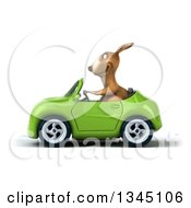 Clipart Of A 3d Kangaroo Driving A Green Convertible Car To The Left Royalty Free Illustration