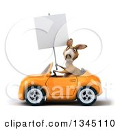 Clipart Of A 3d Kangaroo Holding A Blank Sign And Driving An Orange Convertible Car To The Left Royalty Free Illustration