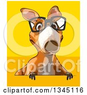 Clipart Of A Cartoon Bespectacled Kangaroo Over A Sign On Yellow And Orange Royalty Free Illustration