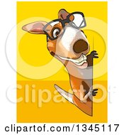 Clipart Of A Cartoon Bespectacled Kangaroo Looking Around A Sign On Yellow And Orange Royalty Free Illustration