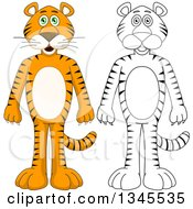 Clipart Of Cartoon Colored And Black And White Outline Standing Tigers Royalty Free Vector Illustration by Liron Peer