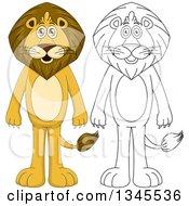 Clipart Of Cartoon Colored And Black And White Outline Standing Male Lions Royalty Free Vector Illustration