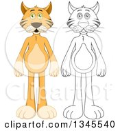 Clipart Of Cartoon Colored And Black And White Outline Standing Cats Royalty Free Vector Illustration