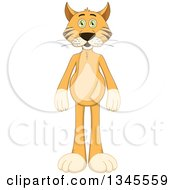 Clipart Of A Cartoon Standing Ginger Cat Royalty Free Vector Illustration