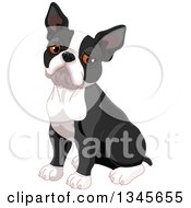 Clipart Of A Cute Boston Terrier Dog Sitting And Pouting Royalty Free Vector Illustration