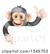Cartoon Black And Tan Happy Baby Chimpanzee Monkey Giving A Thumb Up And Pointing Down Over A Sign