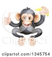 Clipart Of A Cartoon Black And Tan Happy Baby Chimpanzee Monkey Holding A Banana And Giving A Thumb Up Royalty Free Vector Illustration by AtStockIllustration