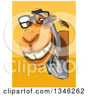 Clipart Of A Cartoon Bespectacled Arabian Doctor Camel Looking Around A Sign Over Yellow And Orange Royalty Free Illustration