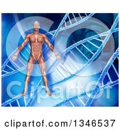 Clipart Of A 3d Medical Anatomical Male With Visible Muscles Over A Blue DNA And Microscope Background Royalty Free Illustration