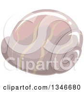 Clipart Of A Taupe Sea Shell Royalty Free Vector Illustration by BNP Design Studio