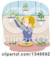 Clipart Of A Cartoon Blond Caucasian Woman Gathering Culinary Herbs From Hanging Plants Royalty Free Vector Illustration by BNP Design Studio