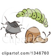 Clipart Of A Sketched Garden Pest Caterpillar Beetle And Snail Royalty Free Vector Illustration