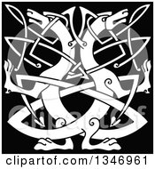 Clipart Of A White Celtic Wild Dog Knot On Black 2 Royalty Free Vector Illustration by Vector Tradition SM