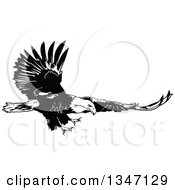 Clipart Of A Black And White Flying Bald Eagle 3 Royalty Free Vector Illustration by dero