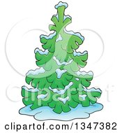 Clipart Of A Cartoon Snow Flocked Undecorated Evergreen Christmas Tree Royalty Free Vector Illustration by visekart