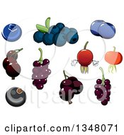 Clipart Of Cartoon Blueberries Currants And Briar Fruit Rose Hips Royalty Free Vector Illustration