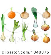 Clipart Of Cartoon Onions Green Onions And Leeks Royalty Free Vector Illustration