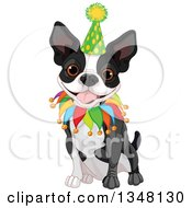 Cute Boston Terrier Or French Bulldog Sitting And Wearing A Birthday Hat And Collar