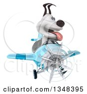Clipart Of A 3d Jack Russell Terrier Dog Aviator Pilot Flying A Blue Airplane Royalty Free Illustration
