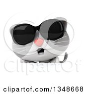 Clipart Of A 3d White And Gray Kitten Wearing Sunglasses Over A Sign Royalty Free Illustration